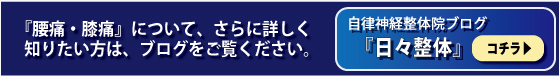 yotus_blog_navi.jpg